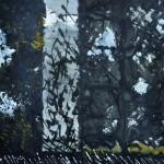 Des journées entières dans les arbres    Technique mixte, acrylique sur  papier 40 x 40 2010Vendu