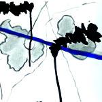 La ligne bleue de la pensée - Encres- 30 X 40 - 2020